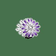 PNGTRPNT_798775C02_RGB